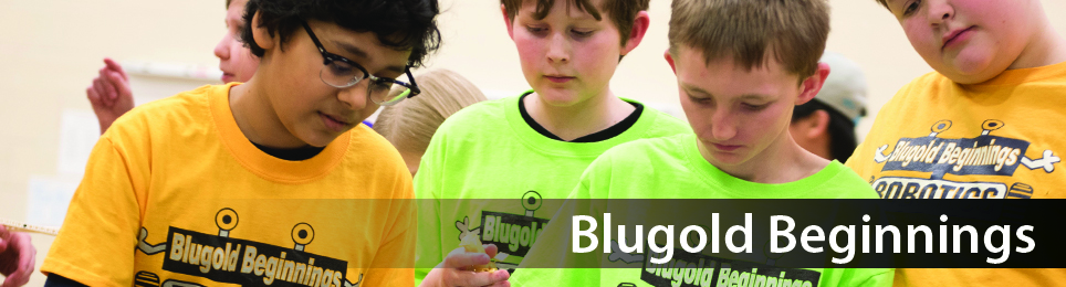Give online to the UW-Eau Claire Blugold Beginnings Program